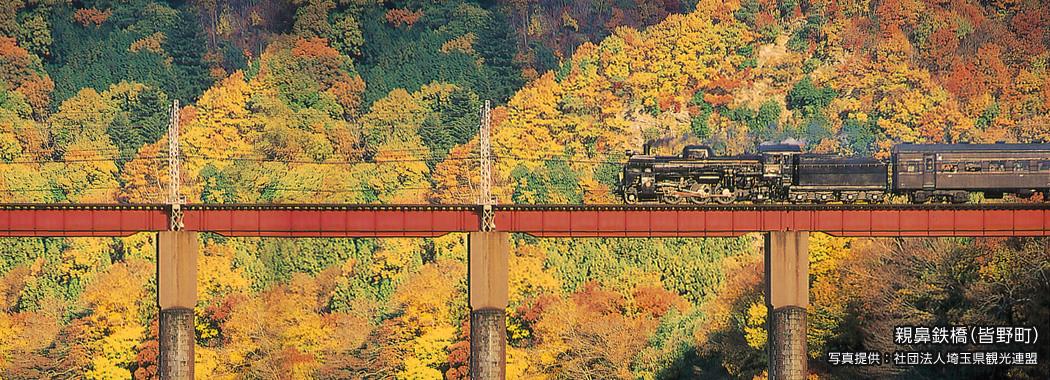 親鼻鉄橋(皆野町) 写真提供:社団法人埼玉県観光連盟